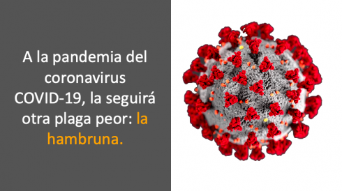 Videos: A la pandemia del coronavirus COVID-19 la seguirá una plaga todavía peor: la hambruna.